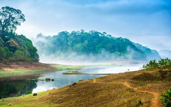 periyar-national-parks