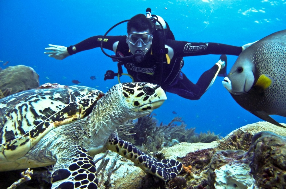 andaman deep sea diving destinations