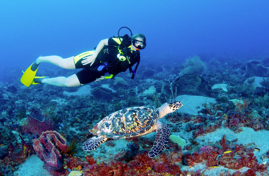 goa deep sea diving destinations