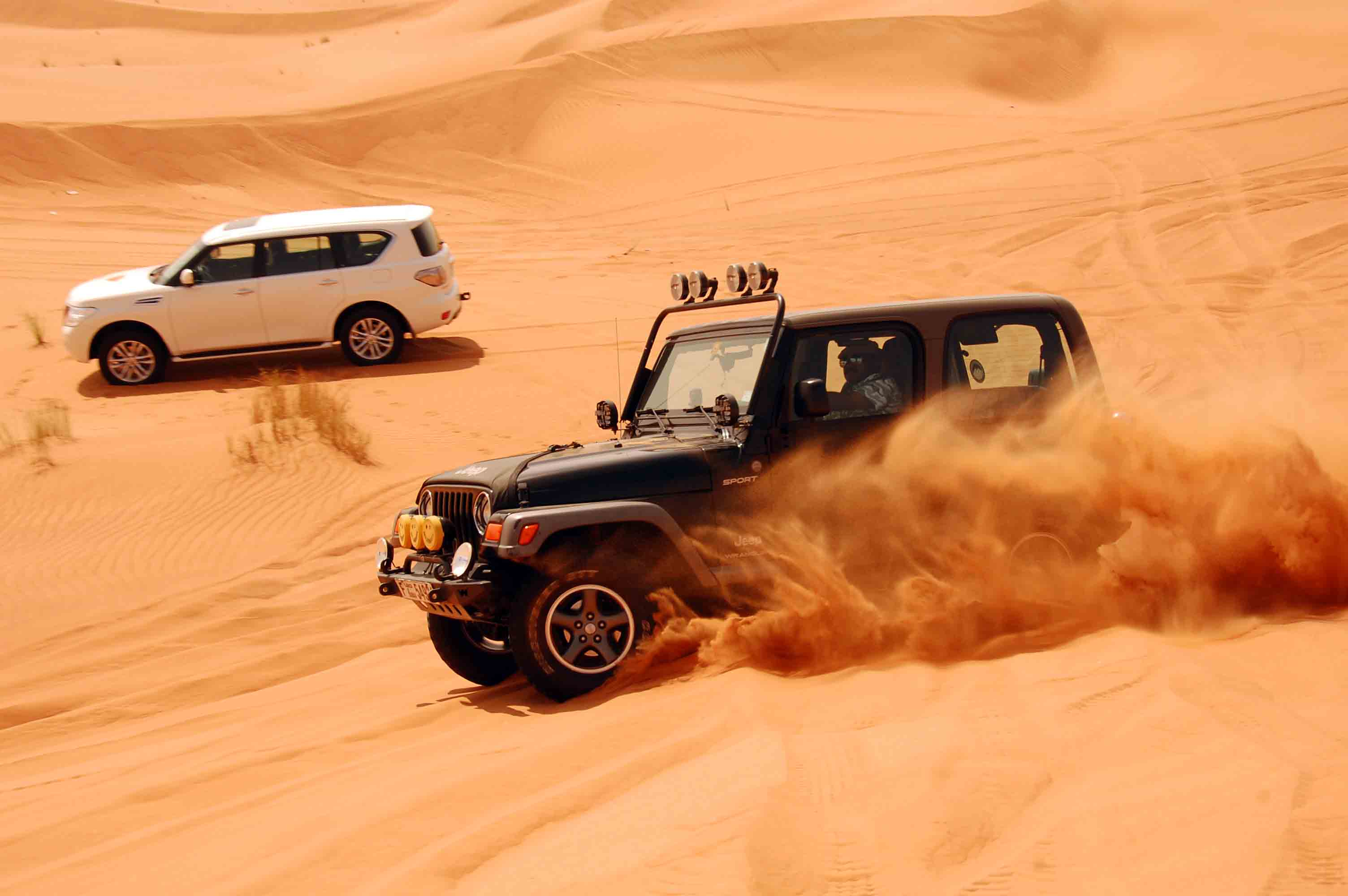 jeep safari activities besides exploring the splendid forts and palaces