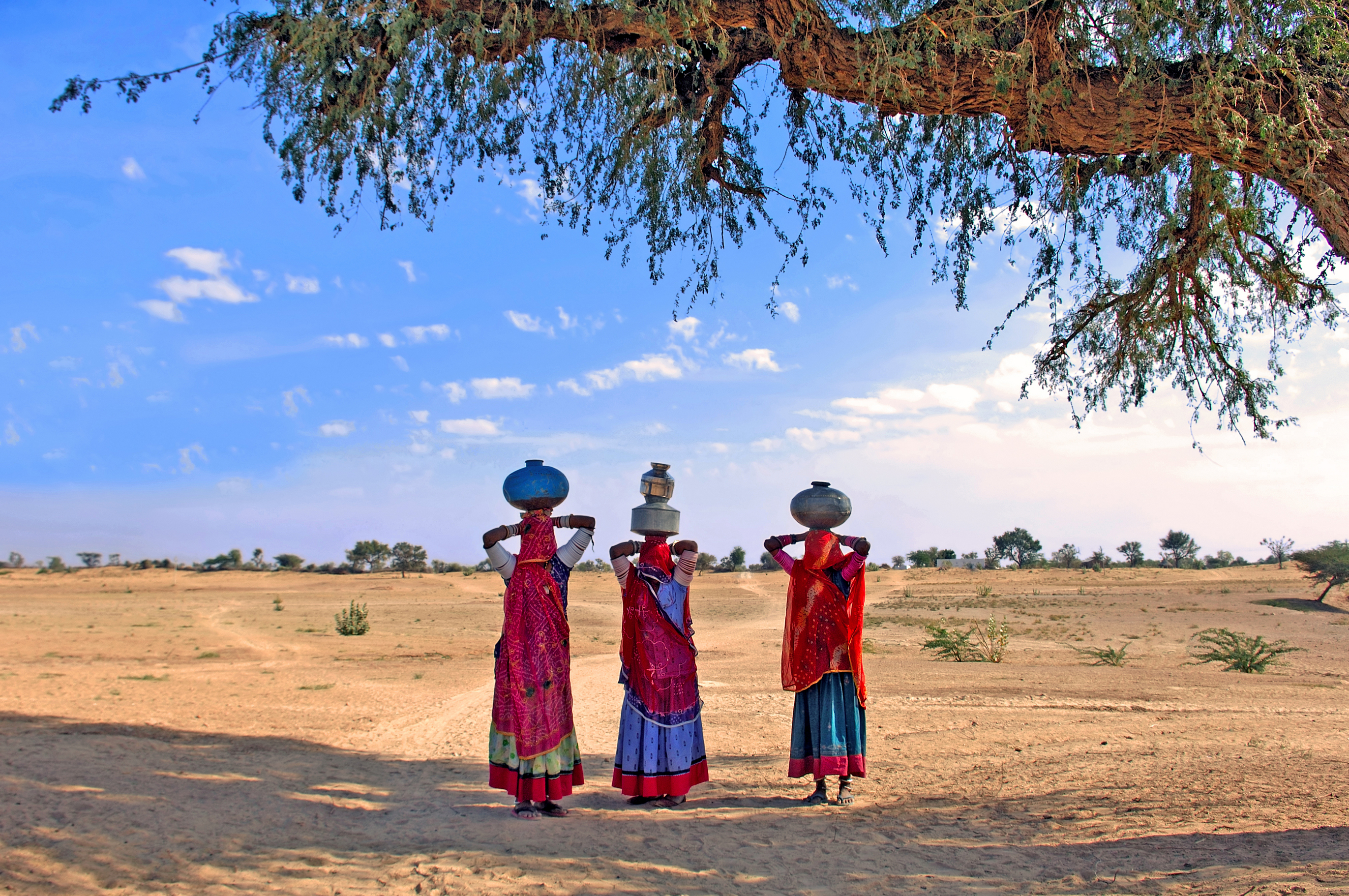 rajasthani village women fetching water from the sparse wells within rajasthan - desert cities
