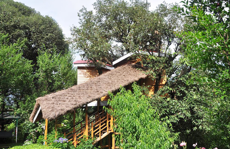 Manali Treehouse Cottages by Travelsite India