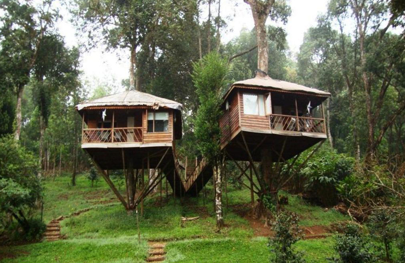 Nature Zone Jungle Resort by Travelsite india