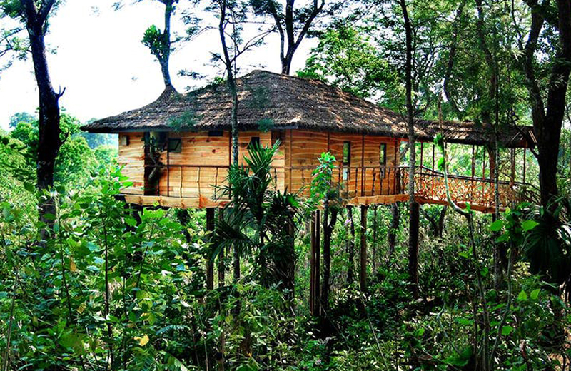 Tranquil Resort -wayanad-by Travelsite India