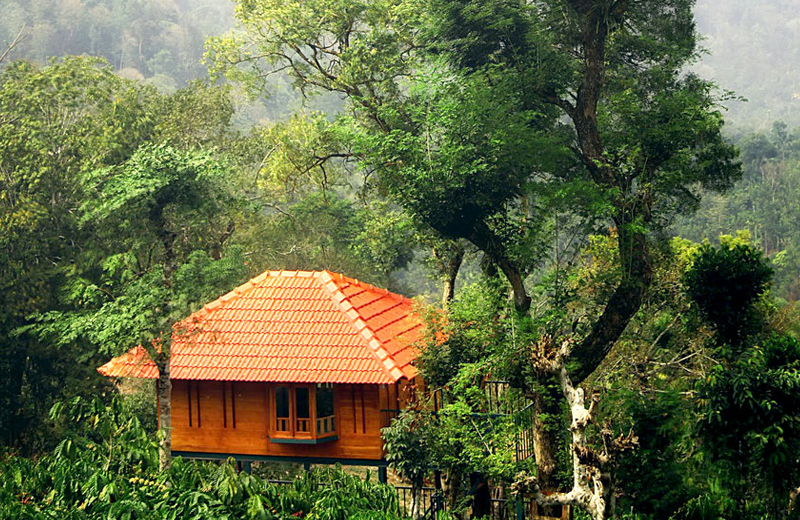 marmalade springs resort - wayanad by Travelsite India