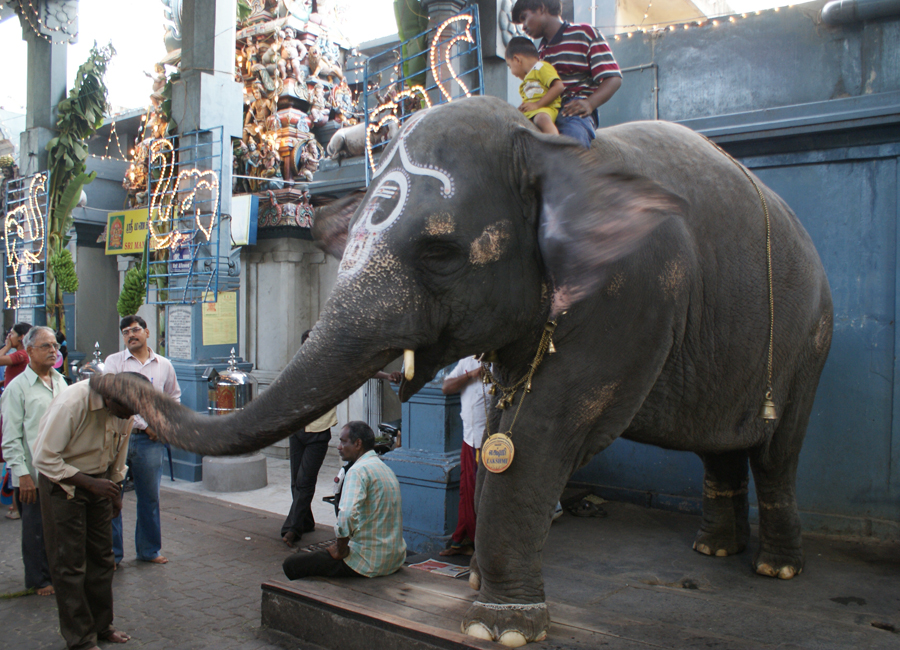 Manakula Vinayagar Temple by Travelsite India