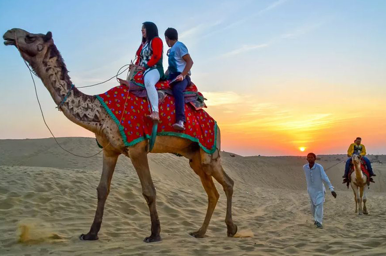 camel safari by travelsite india