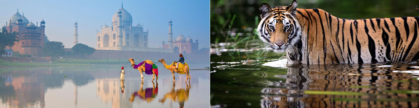 Golden Triangle With Central India Tour