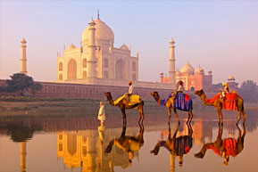 Golden Triangle with Bollywood & Backwater