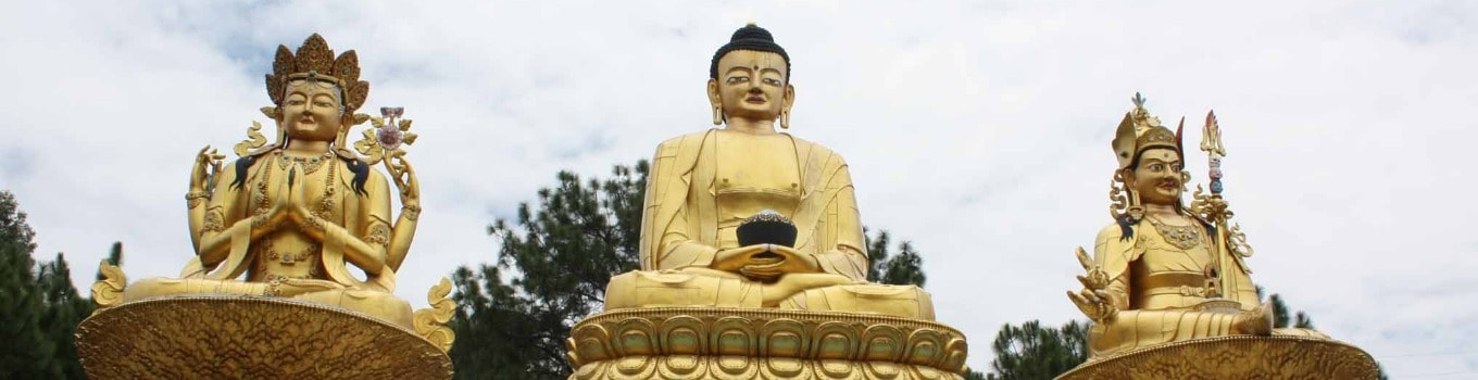 Golden Triangle with Buddhist Tour